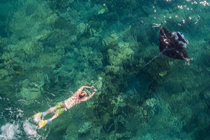 Du khách bơi theo cá đuối Manta ngoài khơi quần đảo Yasawa, Fiji - Ảnh chụp từ flycam