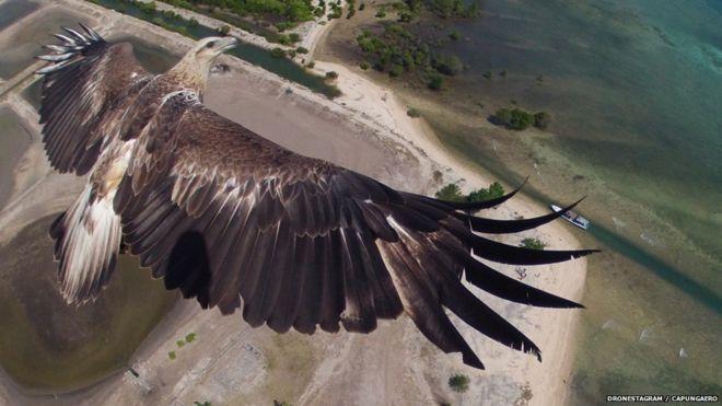 khung hình đẹp từ video quay bằng flycam